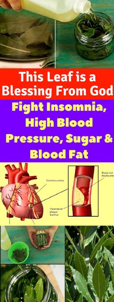 Lower Blood Pressure Remedies This Leaf is a Blessing From God: Fight Insomnia, High Blood Pressure, Sugar and Blood Fat – Today Health People Blood Pressure Chart, Blood Pressure Remedies, Lower Blood Pressure, Natural Health Remedies, Home Remedies, Natural Sleep Remedies, Holistic Remedies, Infection Des Sinus, Natural Remedies