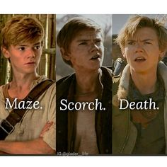 Maze. Scorch. Death. Newt's evolution See the little foreshadowing at the end? Sorry - - #themazerunner #mazerunner