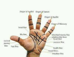 Do you want to know your future? Your Fate Is In Your Hands. See just how much your hands can say about your personality Know Your Future, Palm Lines, Reiki, Salud Natural, Fortune Telling, Palmistry, Book Of Shadows, Numerology, Runes