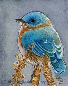 Bluebird Watercolor print 5x7