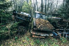 Abandoned Car Cemetery