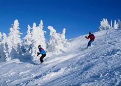 Shimla Honeymoon Packages are fully filled up with joy and happiness. Shimla Honeymoon Tour can be availed at all budget price. Honeymoon Tour Packages, Best Honeymoon Destinations, Honeymoon Places, Honeymoon Trip, Holiday Destinations, Best Skis, Spring Resort, Shimla, Tourist Information