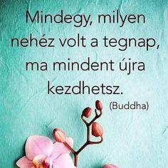 """pozitív gondolatok on Instagram: """"➖ Kövess és kapcsold be az értesítéseket, hogy ne maradj le! 👉@pozitivgondolatok ➖ 🔸 🔸 🔸 🔸 🔸 🔸 🔸 🔸 🔸 #hungary_gram#ikozosseg#mik…"""" Buddha, Neon, Instagram, Neon Colors, Neon Tetra"""