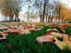University Of Greenwich, Dolores Park, Travel, Viajes, Destinations, Traveling, Trips
