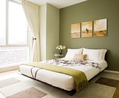 parede-verde-oliva                                                       …