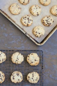 Chocolate Chip Cookies via DeliciouslyOrganic.net #paleo #grainfree