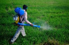 Choose The Best Fertilizer For Your Crop. Visit http://findcompany.in/listingcategory/agriculture