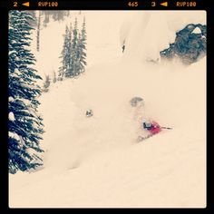 Pure pow heaven. Credit Sean Hannah - @sunshinevillage- #webstagram