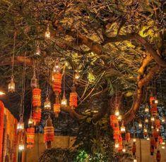 Desi Wedding Decor, Wedding Reception Flowers, Wedding Mandap, Wedding Flower Decorations, Diwali Decorations, Wedding Stage, Tree Wedding, Wedding Ideas, Stage Decorations