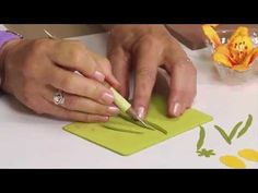 How to Use Sizzix Daylily Flower Die. http://www.ucutathome.com/store/cat/Sizzix/id/37