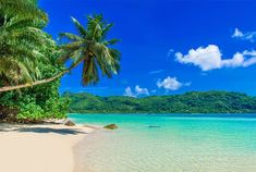 Seychelles in Pictures: 20 Beautiful Places to Photograph | PlanetWare Marine National Park, National Parks, Most Beautiful Beaches, Beautiful Places, Costa, Safari, Camping In Pennsylvania, Miami, Florida