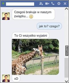 #śmieszne, #zabawne, #humor, #memy, #demotywatory, #obrazki Why So Serious, Funny Messages, Best Memes, Giraffe, Thats Not My, Jokes, Mood, Animals, Sisters