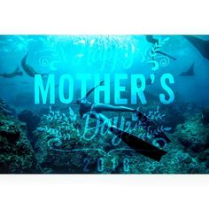 Wishing all #mothers around the world a #happymothersday! Thank you for all the #love #care and support you gave us while growing up! Thank you for being patient and always wishing the best for us! We #love you #Mom! #bluuespace or @bluuespace for a chance to get featured !  & caption: @milanbluue  #freediving #spearfishing #travel #underwater #photography #sea #ocean #beach #animal #fish #apnea #fishing #sustainability #food #paradise #blue #depth #adrenalin #fitness #health #yoga #gopro…