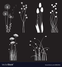 Blooming wild flowers separated on black Vector Image - Card diy - Shabby Chic Embroidery, Simple Embroidery, Hand Embroidery Patterns Free, Embroidery Flowers Pattern, Black Paper Drawing, Bloom And Wild, Window Art, Chalkboard Art, Wildflowers