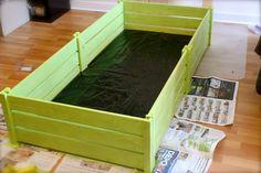 Green Tortoise Table