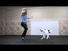'Hero' the Super Collie and his partner Sara Carson perform a cool dance routine to the song 'Boogie Shoes. Sara Carson, Grease Dance, A Dogs Prayer, Cool Dance Moves, Boogie Shoes, Dance Routines, Dog Show, Cute Gif, Working Dogs