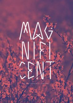 """Magnificent - Ray Badham (Hillsong) [ 2001 ] From the album """"Blessed"""" by Hillsong Live 95 / 365 *Click here to visit """"The Worship Project!"""""""
