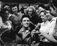 """JAILHOUSE ROCK"" Elvis Presley, MGM, 1957, I.V."