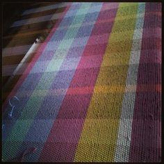 Cotton checks on loom