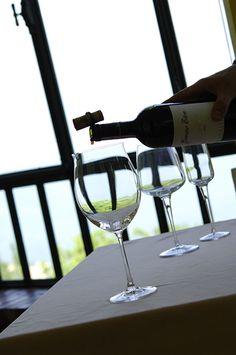 Degustate i nostri vini davanti al panorama del lago di Garda