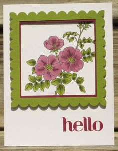 Sweetbriar Rose stamp set colored with the Blendabilites and then bordered with a frame that is lifted off the card with dimensionals,
