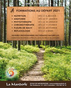 [Energétique ] - Energétique Formation Continue, Nutrition, Bach Flowers, Career Training, Naturopathy, Anatomy