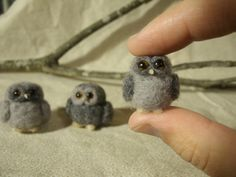 Tiny Critters that Will Capture Your Heart | LIVING FELT Blog!