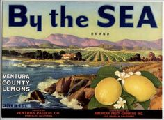Montalvo Ventura County By the Sea Lemon Citrus Fruit Crate Label Art Print Ventura California, Ventura County, Vintage California, Posters Vintage, Vintage Labels, Vintage Ads, Vintage Signs, Retro Ads, Vintage Cameras