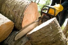 Are you looking for a landscape contractor and a tree contractor? If you are in Lapeer, MI, Bonds Tree Work is the company for you.