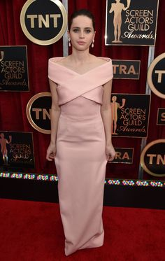 2015 Screen Actors Guild Awards Red Carpet///  Half of a straight jacket.