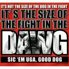 Go, Dawgs! (I always wonder if I'll get shot for shouting this 'round here on game days. I'm always willing to take the risk. Alumni proud. )