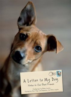 A Letter to My Dog: Notes to Our Best Friends by Robin Layton, http://www.amazon.com/dp/1452114420/ref=cm_sw_r_pi_dp_W..Zqb149BW4R