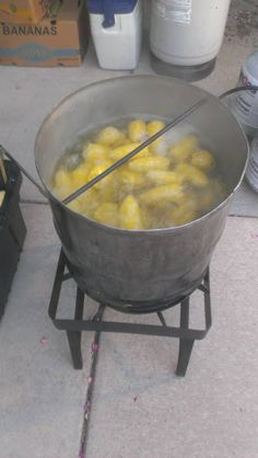Pig Roast catering grand rapids Michigan funnel cakes elephant ears carnival foods made at your event company picnic school carnival Michigan Ohio Indiana Illinois