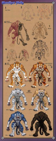 Weretiger Anatomy  Vasuman's other form