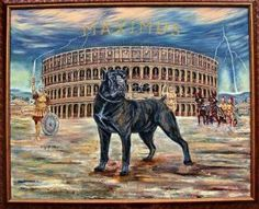 The Cane Corso dogs that fought in the Roman Empire-Amphitheater