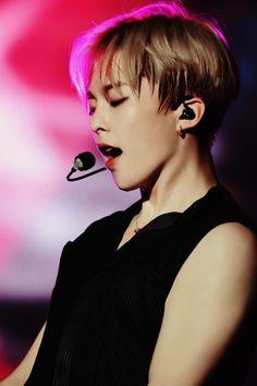 Imagen de exo and xiumin