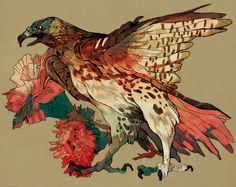 red-tailed hawk and carnations commission for hak