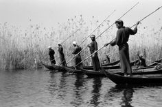 Wilfred Patrick Thesiger (Addis Abeba, 3 giugno 1910 – Londra, 24 agosto 2003): View of men in boats, spear fishing on Umm al Abid. Each of the boats has one man standing in the bow holding a long five-pronged spear, while another man sits, paddling. Iraq 1958. © Pitt Rivers Museum, University of Oxford