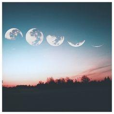 Luna & Fases