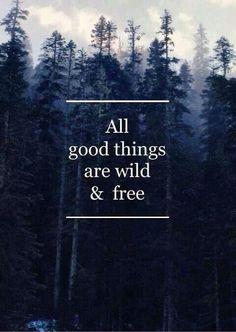 A wild and free spirit