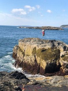 3 Acadia National Park Hiking Trails You Can't Miss Acadia National Park Hiking, National Parks, Acadia Maine, Best Hikes, Summer Travel, Hiking Trails, Places To Travel, Vacation, Cross Country