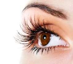 6 Ways to Disguise Aging Eyes: Grow Thicker, Longer Lashes with Lash-enhancing serums  #antiaging #tips #howtos #beauty