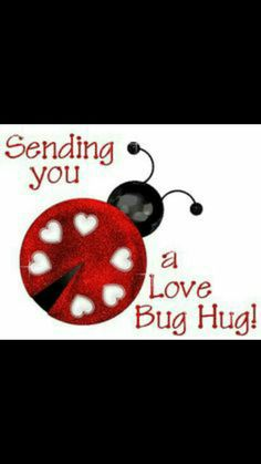 Sending you a love bug hug! Thank you my Lovebug! Hugs And Kisses Quotes, Hug Quotes, Love Quotes, My Funny Valentine, Happy Valentines Day, Ladybug Quotes, Hug Pictures, Hug Images, Thinking Of You Quotes