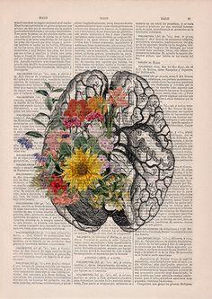 Springtime brain Nature Anatomy - Brain Flower - Anatomy Illustration - Medical Art Print - Brain W Flower Anatomy, Human Anatomy Art, Brain Anatomy, Anatomy Drawing, Brain Art, Medical Art, Medical Drawings, Kunst Poster, Wow Art