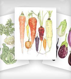 Fruit and Vegetable Prints - Set of 3 | Art Prints | Rigel Stuhmiller | Scoutmob Shoppe | Product Detail