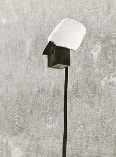SCHNEIDERS, Toni (1920 - 2006)      The winter - Sleepyhead