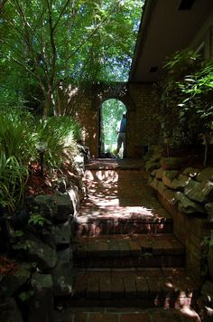 A Shade Garden with Waterfalls and Ponds