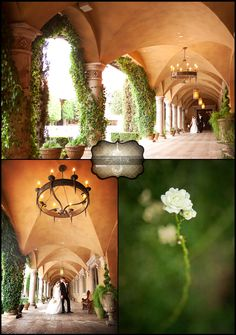 Beauitful detail shots here at Villa Siena located in the Piazza Toscana Courtyard | villasiena.cc