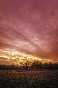 pink sunset, Hungary