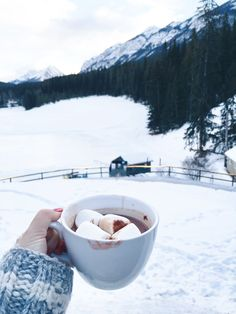 hot chocolate & tobogganing